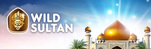 Wild sultan : test et avis complet de ce casino en ligne