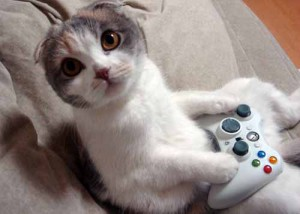 cat-game
